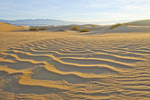 Sand Dunes Desert — Stock Photo