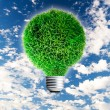 Light bulb with green grass. — Stok fotoğraf