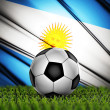 Soccer ball with Argentina national flag on background — Stock Photo #31431841