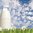 Bottle of milk with green grass — Stock Photo
