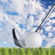 Golf ball and golf club — Stock Photo