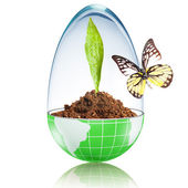 Butterfly on the globe filled with dirt and plant — Stock Photo
