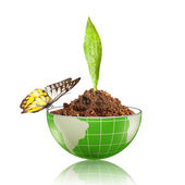Globe with dirt and butterfly — Stock Photo
