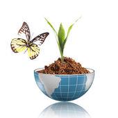 Butterfly on the blue globe — Стоковое фото