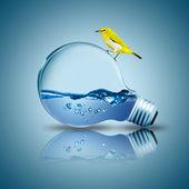 Pájaro amarillo en bombilla con agua en el interior — Foto de Stock