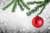 Christmas Tree branch and red christmas ball — Stock Photo