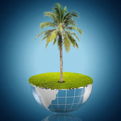 Coconut tree growing on the blue globe — Stock Photo