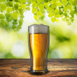 Glass of beer on natural pattern wood table — Stock Photo