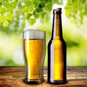 Bottle and glass of cold beer — Stock Photo