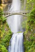 Multnomah Falls — Stockfoto