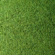 Grass Texture — Stock Photo #36454783
