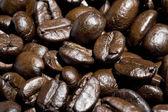 Brown coffee bean background — Foto de Stock