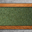 Wood on grass — Stock Photo #36462791