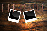 Designer concept for blank photo frames — Stok fotoğraf