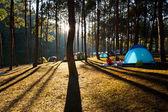 Illuminated blue Camping tent from sunlight — Stock Photo