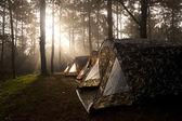 Rayon de soleil qui brille sur la tente de camping — Photo