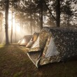 Ray of sunlight shining on the camping tent — Photo