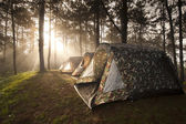 Ray of sunlight shining on the camping tent — Stock Photo