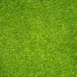 Grass Texture — Stock Photo #38860603