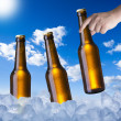 Hand Holding Beer Bottle — Stock Photo #39699385