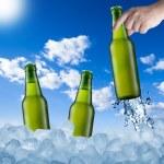 Hand Holding Beer Bottle — Stock Photo #39699413