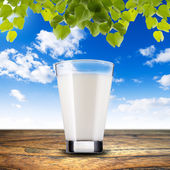 Glass of milk — Stock Photo