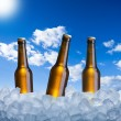 Beer Bottle — Stock Photo #39700075