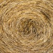 Haystack — Stock Photo #39700591