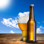 Glass and Bottle of Beer — Stock Photo