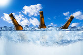 Beer bottles in ice cubes — Stock Photo