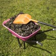 Stock Photo: Wheel barrow of horse dung