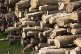 Stapel van logboeken — Stockfoto