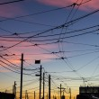 Stock Photo: Street car cables at sunset