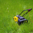 Lawn Mower in long grass — Stock Photo