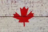 Maple Leaf Painted on a Wall — Stock Photo