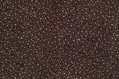 Texture of dark cloth with silver and blue sequins — Stock Photo