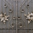Forged metal gate as a backdrop — Stock Photo