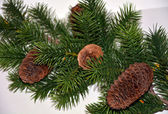 Branch of artificial fir with cones closeup — Stock Photo