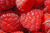 Ripe raspberry as a background extreme close-up (macro) — Stock Photo