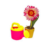 Pink Artificial flower in yellow pot and a children's watering c — Stock Photo