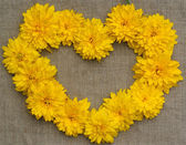 Frame of yellow flowers in the form of heart against a backgroun — Stock Photo