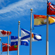 Stock Photo: The Canada and its provincial flags