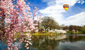 The Cherry Blossom Festival in New Jersey — Stock Photo