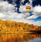The foliage scenery — Stock Photo