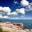 The Acadia National Park Maine Coast USA — Stock Photo #29381079