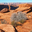 Stock Photo: Rock formation in glen canyon