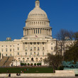 Stock Photo: The Capitol building in Washington D.C