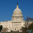 The Capitol building — Stock Photo