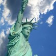 The Statue of Liberty — Stock Photo #29388999