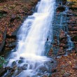 Douglas Falls — Stock Photo #29389509
